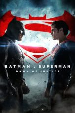 Batman Superman: Dawn of Justice