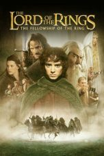 The Lord of the Rings Fellowship Ring